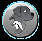 Quail Chase Labradors's Company logo