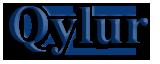 Qylur Security Systems's Company logo