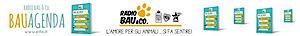 Radiobau's Company logo