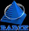 Radixweb's Company logo