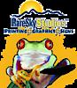 Rare Sky Studios's Company logo