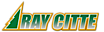 Ray Citte Logo