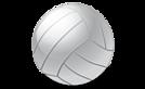 Reef Volleyball Club's Company logo