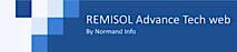 Remisoladvance's Company logo
