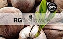 Rg Worldwide's Company logo