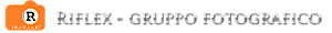 Ri-flex Siteworks's Company logo