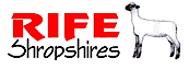 Rife Shropshires's Company logo