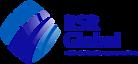 RSR Global's Company logo