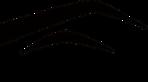 Runway Elite's Company logo