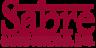 Sabre Systems, Inc. Logo