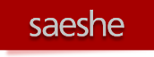 Saeshe Advertising & Marketing's Company logo