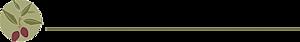 Salaminstitute's Company logo