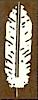 Salish Construction's Company logo