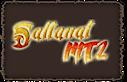 Saltanatmt2, Biz's Company logo