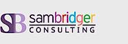Sam Bridger Consulting's Company logo