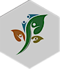 Sankalp, Iit Roorkee's Company logo