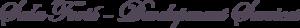 Sasa Foric's Company logo