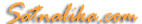 Satnalika's Company logo