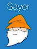 SayerApp's Company logo