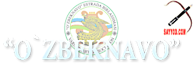 Sayyod's Company logo