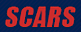 Dragon Do Fight Gear's Competitor - SCARS logo