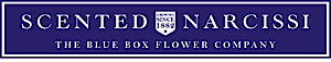 Scented Narcissi's Company logo