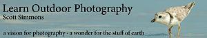 Scott Simmons Photography's Company logo