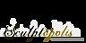 Sandscapes's Competitor - Sculptopolis logo