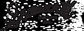 Seaworth Coffee Company's Company logo