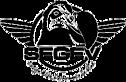 Segev Design's Company logo