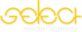 Selectmodeling's Company logo