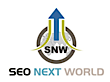 Seo Next World's Company logo