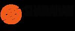 Shanahan Strategy's Company logo