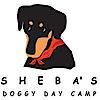 Shebasdoggydaycamp's Company logo