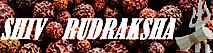 Shiv Rudraksha's Company logo