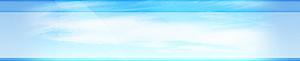 Shree Laxminath Courier's Company logo
