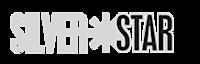Silver Star Enterprises's Company logo