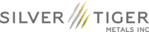 Silver Tiger's Company logo