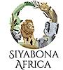 Kenyasafari's Company logo