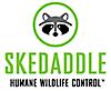 Skedaddle Humane Wildlife Control's Company logo