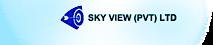 Sky View's Company logo