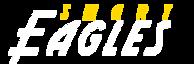 Smart Eagles's Company logo