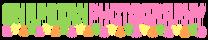 Snapbean Photography's Company logo