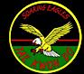 Soaring Egles Tekwondo Academy's Company logo