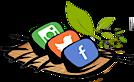 Socialsushi Marketing's Company logo