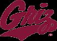 Grizsoftballcamps's Company logo