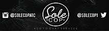 Solecop's Company logo