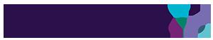 Solentim's Company logo
