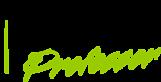 SolidProfessor's Company logo