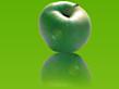 Solmack's Company logo